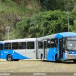 Por que alguns ônibus em Campinas tem a pintura prata, ao invés do branco?