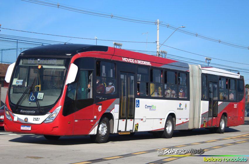 Prefeitura finalmente define as linhas em que vão circular os ônibus articulados da Expresso Campibus