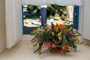 Decorar o ambiente com plantas e flores naturais faz bem à saúde
