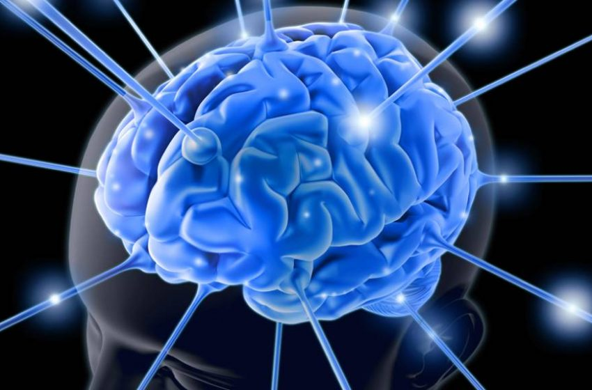 Dia Mundial do Cérebro: Neurocirurgião da UNICAMP explica os principais tipos de tumores cerebrais, seus sintomas e tratamentos